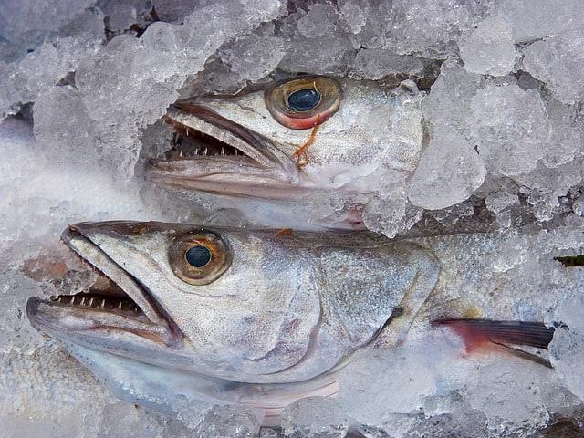 fiskehandler